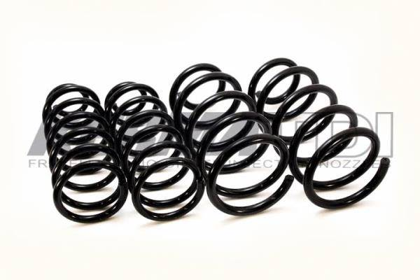KermaTDI - Kerma TDI Spring Set Front and Rear (Mk4) - (excluding Wagon)