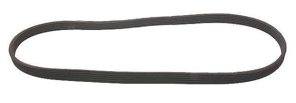 KermaTDI - Serpentine Belt (Mk4 BEW) - 06A260849C